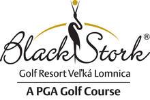 Logo Black Stork